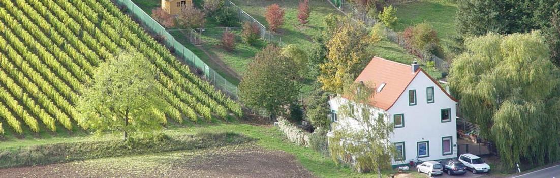 Hundepension an der Weidenmühle Neu-Bamberg
